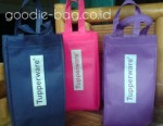 Goodie Bag Tupperware